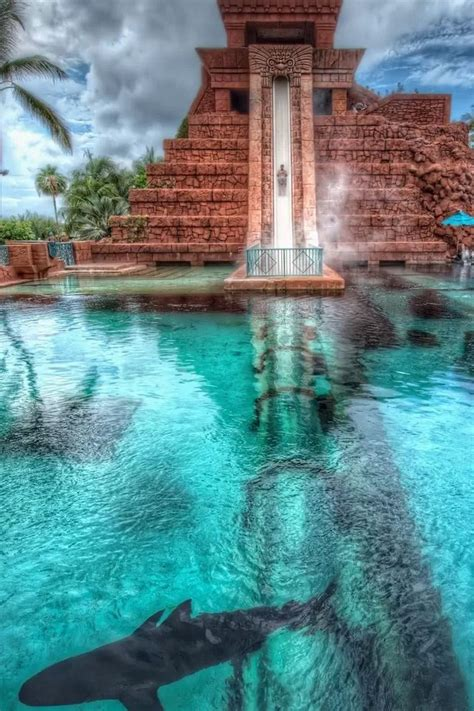 Leap of Faith at the Atlantis resort in the Bahamas