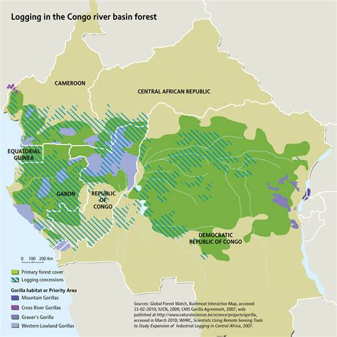 Logging in the Congo river basin forest   GRID-Arendal