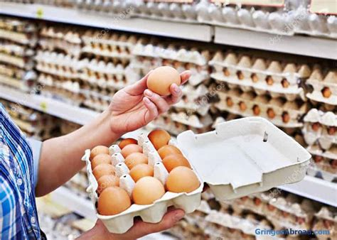 How to Store Eggs in Ecuador: Do Eggs Have to be