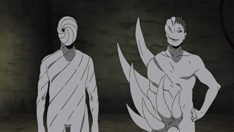 What is the difference between Black Zetsu and White Zetsu